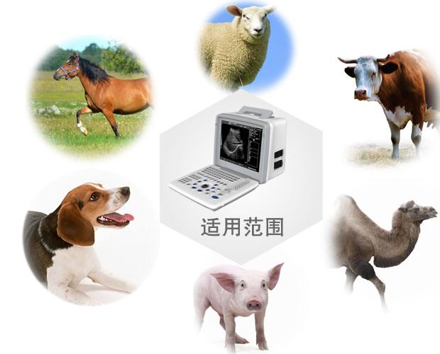 V-300全数字动物竞技宝官网竞技宝入口(动物版)适用范围