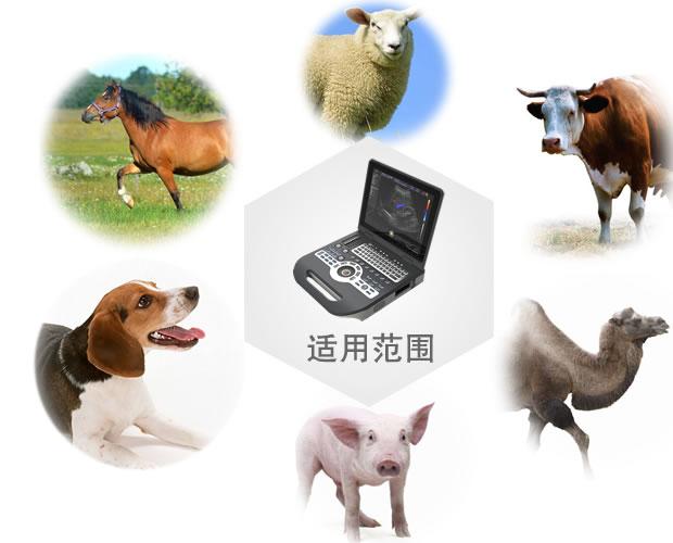 V-3800彩色竞技宝手机端动物竞技宝官网诊断系统适用范围