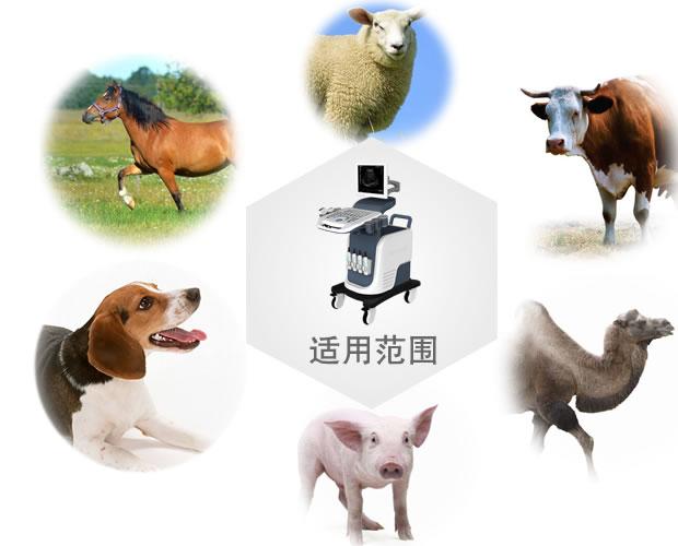 V-7800全彩色竞技宝手机端动物竞技宝官网竞技宝入口适用范围